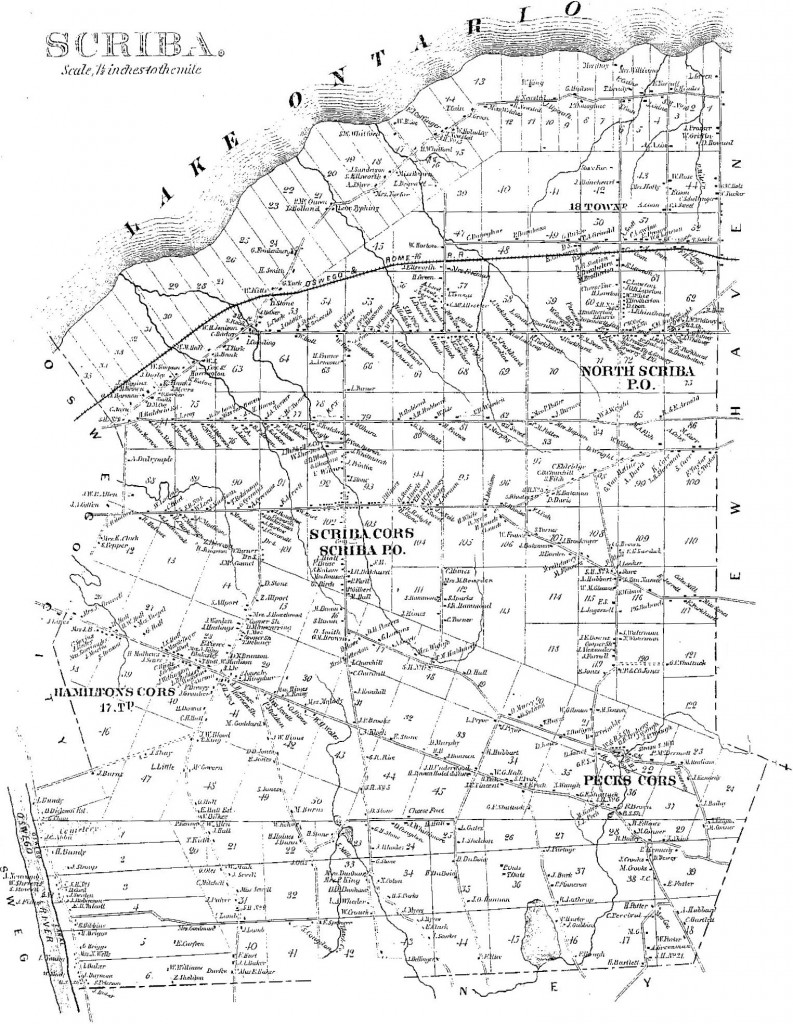 scribamap
